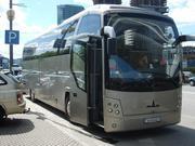 Автобус МАЗ 251050