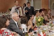 Тамада, живая музыка на свадьбу, корпоратив, юбилей! недорого.