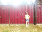 Забор из профнастила Киев,  калитки Киев,  ворота для дома дачи Киев