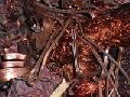 Куплю Лом алюминия, меди, латуни, бронза, свинец.Киев 067-937-81-66.