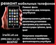 Ремонт мобильных телефонов. фотоаппаратов. ноутбуков