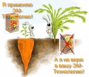 Продажа стимуляторов роста растений,  оптовая торговля,  доставка,  низки