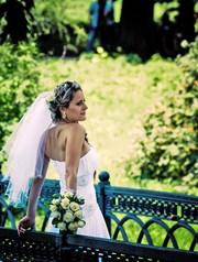 Ваш фотограф на свадьбу корпоративы