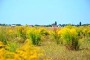 Продам участок в селе Глубокое 28 км от Киева.