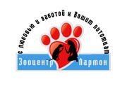 Стрижка собак в Киеве (068)53 03 224