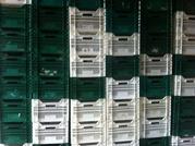 Пластиковая тара новые и б.у ящики