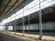 Строительство зернохранилищ,  овощехранилищ,  свинарников под ключ.