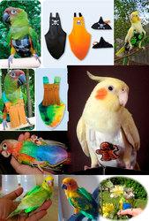 Защитные костюмы,  защитные жилеты от самоощипываня перьев у попугаев