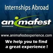 Animafest Experience. Стажировки за границей