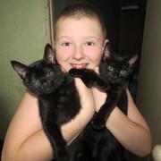ОТ чистого сердца подарим котенка)