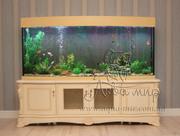 Изготовление аквариумов и террариумов из стекла по Вашим размерам