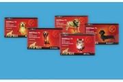 FIPRex 75 спот-он для собак и котов(1 пипетка) -40 грн