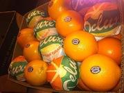Апельсины из Пакистана,  Египта. Прямые поставки