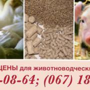 Комбикорм для свиней финиш 65-115 кг.