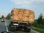 Дрова колотые дуб,  акация,  береза,  сосна,  тополь с доставкой