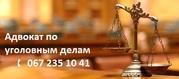 Помощь адвоката по уголовным делам.
