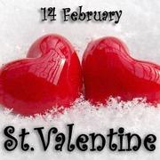 День Святого Валентина в Буковеле или Львове !