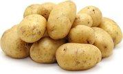 Продаю элитный сортовой картофель первой репродукции