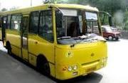 Водители на автобус