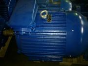 Электродвигатель 4АМ-225-М2. 55 кВт. 2940 об.м.