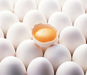 Продам яйцо куриное оптом и в розницу от птицефабрики