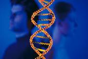 Тест ДНК на отцовство в Киеве