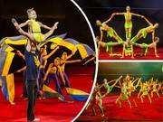 Школа танцев,  художественная гимнастика,  акробатика,  цирковые жанры.