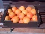 Грейпфрут Pomelo из Испании