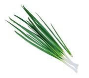 Продам лук зеленый опт,  крупный опт