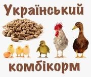 Комбікорм від українського виробника.