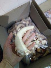 ООО« Амтек Трейд» предлагает замороженные свиные уши и хвосты!