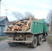 Недорогой вывоз мусора по Всему Киеву