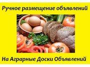 Реклама на агро-досках. АГРО объявления  для предприятий Киев