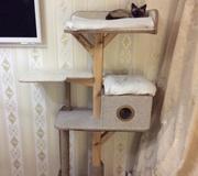 Домик,  игровой комплекс для кошек,  ремонт когтедерок
