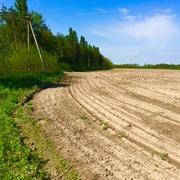 Участок 35 гектар приватизирован Киев область