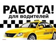Водитель в такси в Киеве на элетрокар