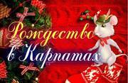 Рождество в Карпатах 2020 от Ястреб-ТУР