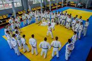 Дзюдо,  айкидо,  карате,  BJJ,  бокс для детей и взрослых!