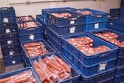 Куплю мясную продукцию с подходящими или вышедшими сроками