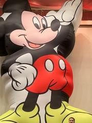 Inflatable animals Надувные фигуры животных