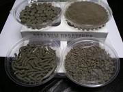 Оптовые поставки сапропеля  для удобрений,  кормов,  косметики